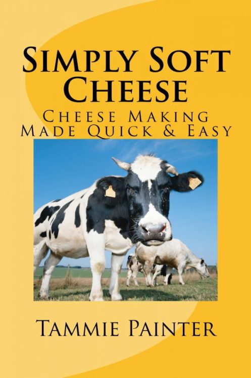 simply soft cheese, tammie painter, cheese making,