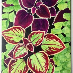 """Coleus"" 8x10"" Acrylic on Claybord"