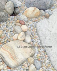 """On the Rocks"" 8x10"" Colored Pencil on Drawing Paper"