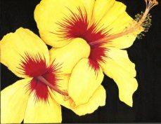 """""""Yellow Hibiscus""""Acrylic on Panel 8x10"""