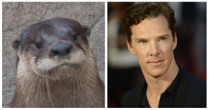 Ahhh, this would explain my fascination with otters.