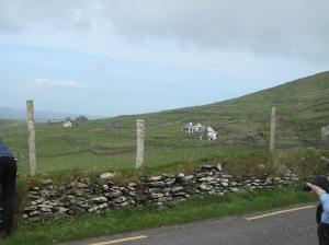 ireland, dingle, sea head, irish