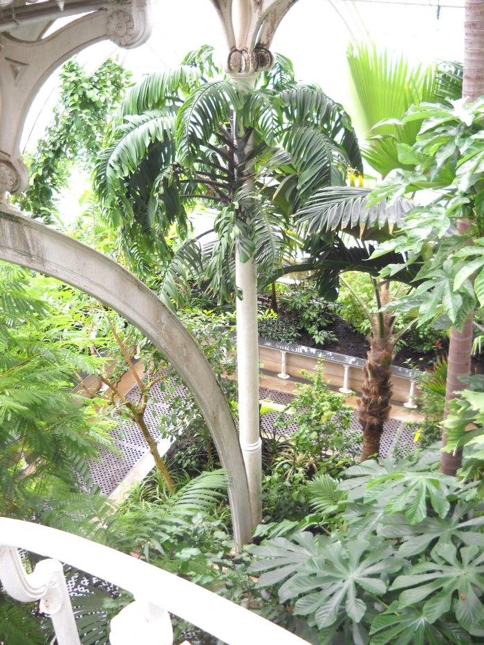 kew gardens, london, uk, palm house