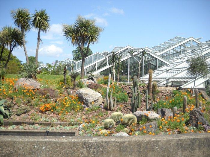 kew gardens, UK, London, United Kingdom, princess of wales conservatory
