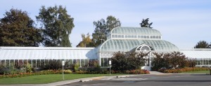 volunteer park conservatory, seattle, washington, greenhouse