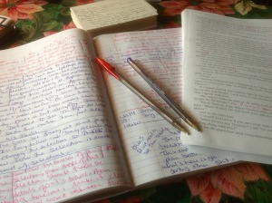 The many, many, many pages of notes after the first read through of The Maze.