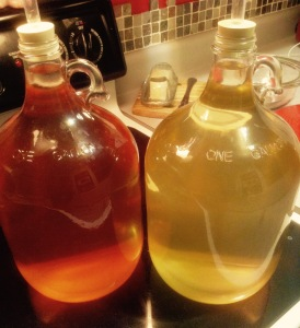 wine fermentation, wine carboy, wine airlock, pear wine, winemaking, grape wine, wine