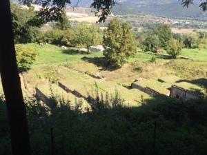 orvieto, italy, italia