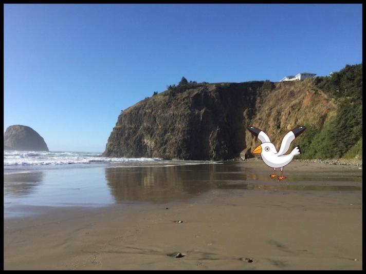 Finn McSpool, Oregon, Oregon Coast, Oceanside