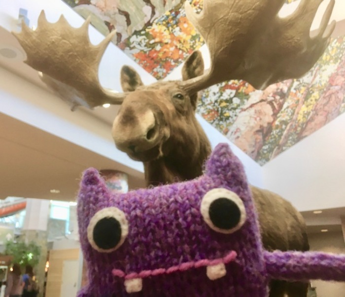 finn mscpool, crawcraft beasties, moose
