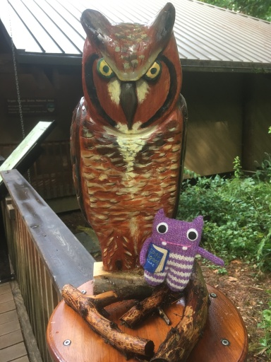 finn McSpool, tyron creek state park, portland, oregon, owl